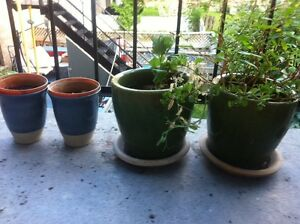 Planters $5 or less