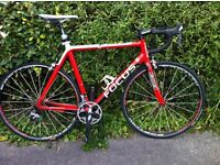 Focus Cayo Carbon Racing cycle. Size XL
