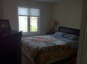 ALLISTON- room rental next to Honda !!!