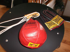 Brand New Everlast Speed Bag Set