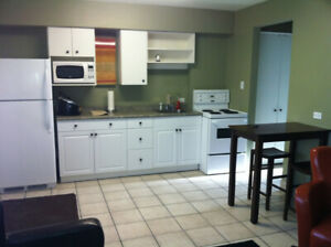 Furnished Apartment Available Aug 1