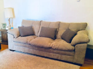 3 seater couch and cushions.