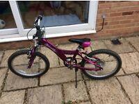 """Taffy Giant girls bike 20"""" wheels"""