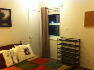 ROOM AND USE OF FULL APARTMENT IN BRIGHTON