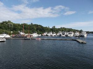 Muskokas area Marina for Sale