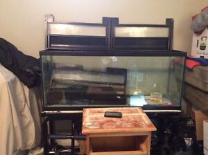 Large fish tank for sale with delivery