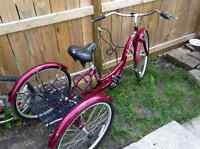 ADULT TRIKE STOLEN from Lorette Ave Sunday July 5