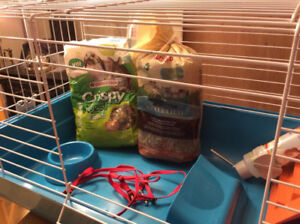 RABBIT CAGE AND ACCESSORIES - CAGE A LAPIN ET ACCESSOIRES