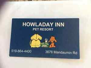Howladay Inn Kennel Stay Gift Certificate for dog or cat