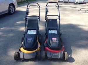 Cordless Lawnmower Buy Amp Sell Items Tickets Or Tech In