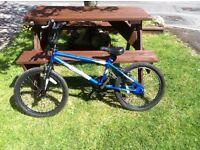 Muddyfox BMX