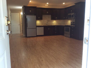 Mar 1 available  One bedroom basement suite in Batchelor Heights