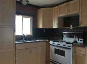Nice clean, very well insulated mobile, may have wood heat if de