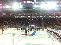Niagara Icedogs tickets for sale below face value - $40/pair!