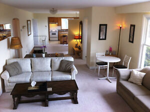 Out of Town SOLAR Airbnb Income Property 4 Sale Brighton Ontario City of Toronto Toronto (GTA) image 2