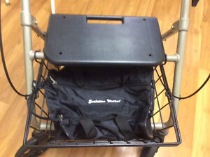 Evolution Piper Walker - $250.00 (Lynn Valley) North Shore Greater Vancouver Area image 4