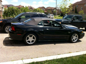 2001 SUPERCHARGED FORD MUSTANG
