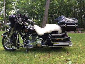Trade Harley Davidson Motorcycle for Classic Car/Truck