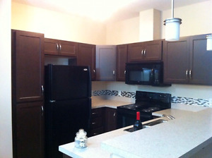 2 bedroom and den room condo for rent