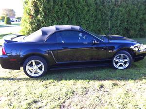 Mustang gt triple black 2000