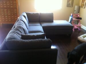 2 month old couch for sale