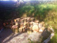 Firewood seasoned cut
