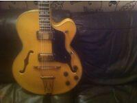 Jazz Guitar Bird