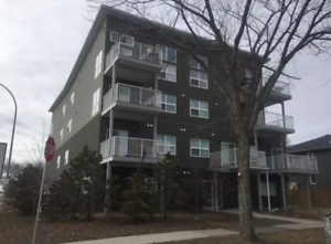 Gorgeous Apartment Building in Inglewood - Close to Downtown!