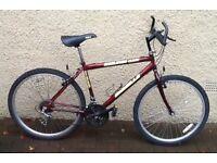 """Bike/Bicycle. GENTS EMMELLE """" KIELDER """" MOUNTAIN BIKE"""