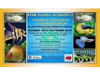 Charity tropical fish and dry goods auction