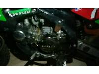 125 Chinese pit bike FULL ENGINE SET UP ONLY!!!