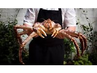 Commis/CDP - Beast Restaurant - Steak & Crab - Come and work with us! Great pay! Great team!