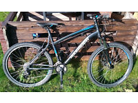 RockRider 5.2 Mountain Bike (Large)