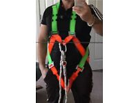 Scaffolding harness