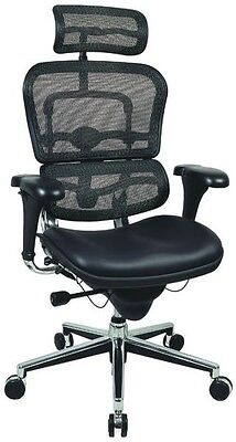 Ergohuman Raynor Lem4erg Ergonomic High Back Office Chair Meshleather Headrest