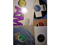 "Dance Vinyl Record Joblot 12""s & LPs – mixed styles and era"