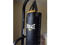 Everlast punching bag with stand and weight plates
