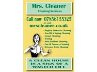 Mrs. Cleaner Cleaning Services