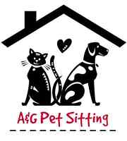 Need a cheap, reliable pet sitter? Pet sitting for $10 a day!