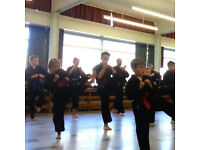 Part Time Positions Available in Schools - Teaching Karate!