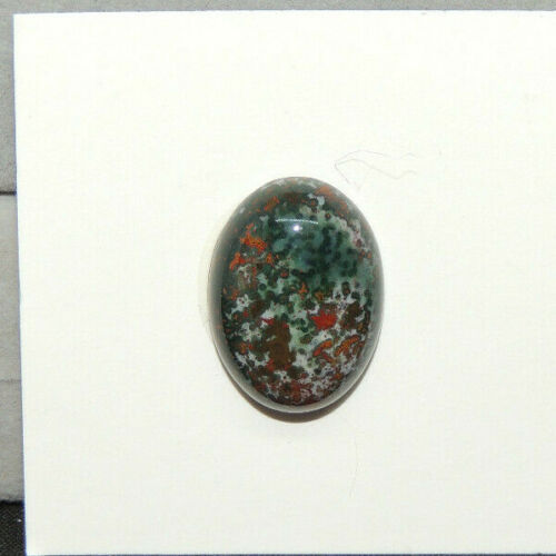 Bloodstone Cabochon 18x13mm with 5.5mm dome from India  (14780)