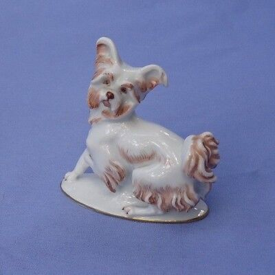 1930 PAPILLON SKYE SILKY TERRIER Rosenthal Germany dog