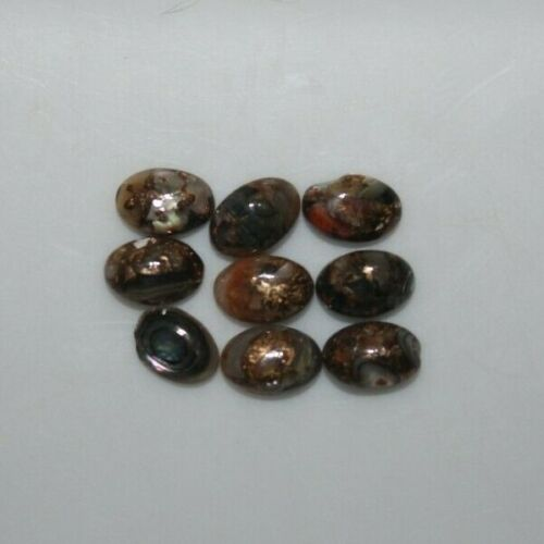 Copper Abalone Shell 6x4mm to 8x6mm Oval Cabochon Loose Gemstones