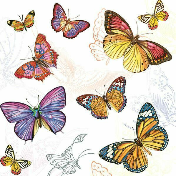 TWO Individual Decoupage Paper Lunch Napkins Spring Insects BUTTERFLIES New