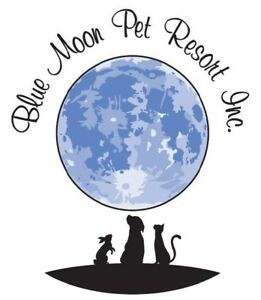 Blue Moon Pet Resort , Luxury boarding for your pet's vacation