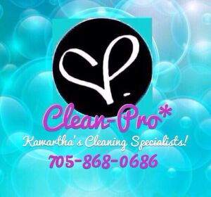 Experienced Self Employed  Full Time Cleaning Lady Available! Kawartha Lakes Peterborough Area image 1