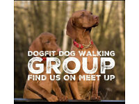 Dog Fit Social Dog walking Group Poole & a Bournemouth