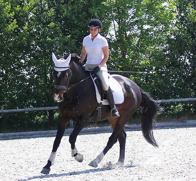 Unsere eBay-Autorin Susanne Feiler ist seit sie denken kann leidenschaftliche Pferdenärrin. (© Susanne Feiler)