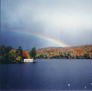 FALL COLOURS- Private Muskoka Lakefront Cottage $249/night & up