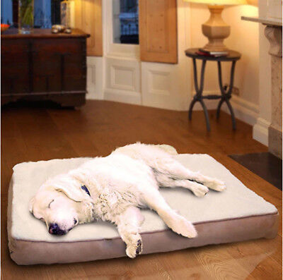 Extra Large Orthopedic Dog Bed Machine Washable Removable Cover Plush Clay Color